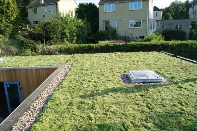 Why A Green Roof Could Be The Answer You Were Looking For